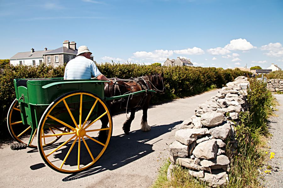 Aran Islands Horse and Cart Photo