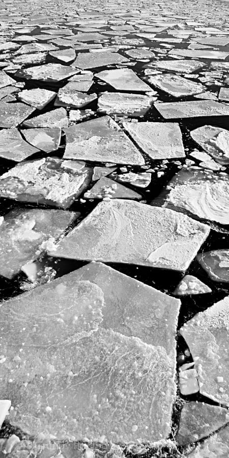Photo of Baltic Sea Ice