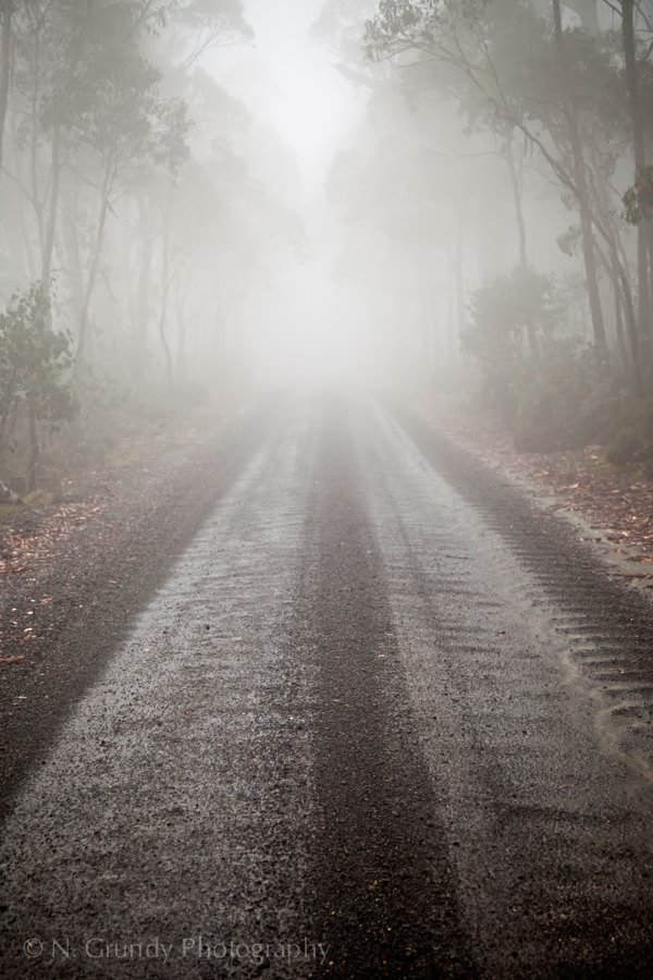 Foggy Road, Ben Lomond