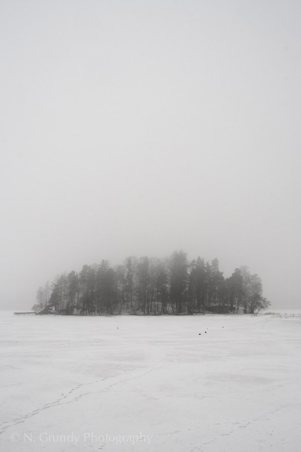 Helsinki Trees