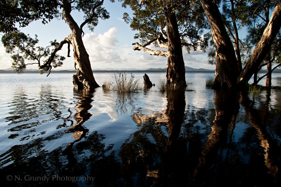 Myall Lakes in Flood