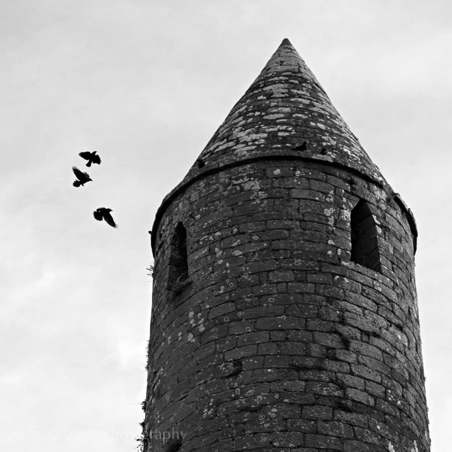 Rock of Cashel Crows Photo