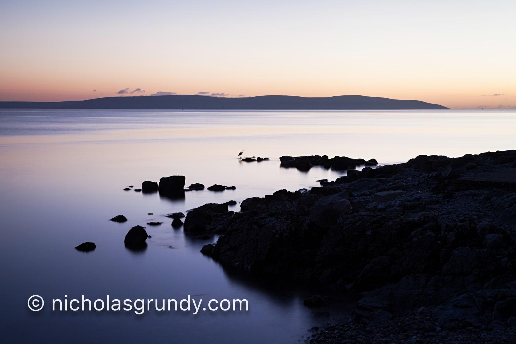 Salthill Sunset Heron photo