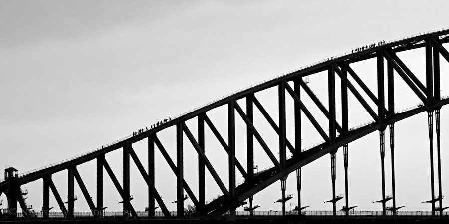 Sydney Harbour Bridge Climb Photo